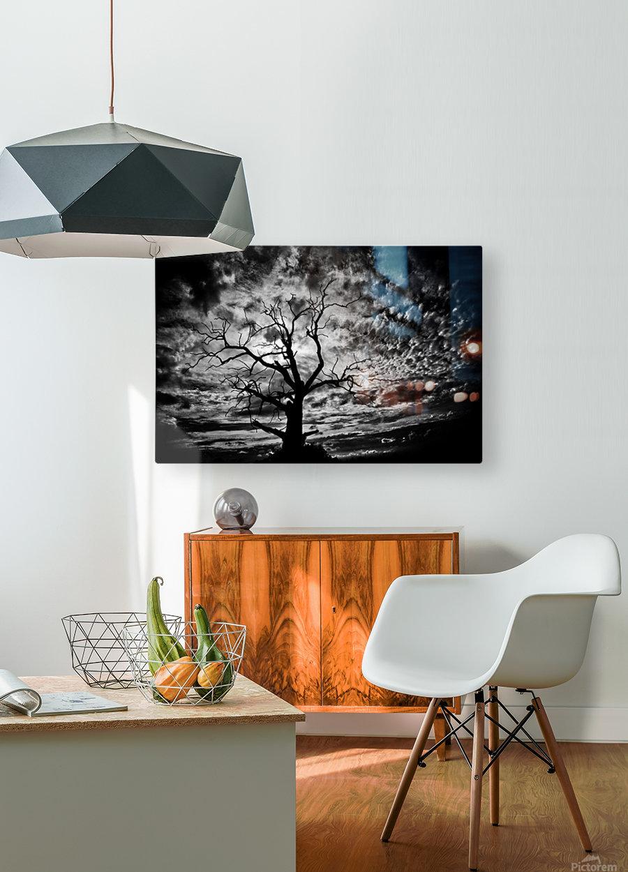 Spooky tree  Impression métal HD avec cadre flottant sur le dos