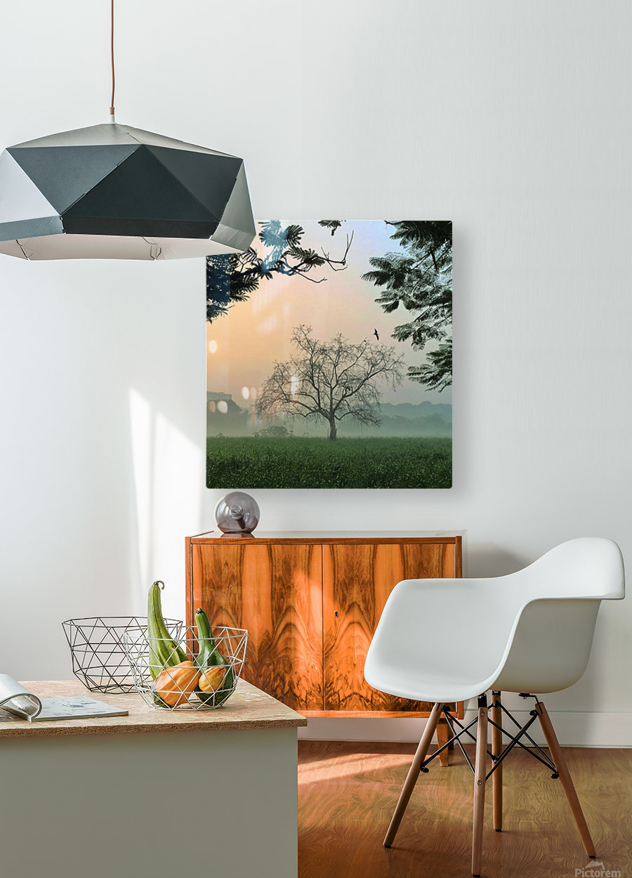 Solo  HD Metal print with Floating Frame on Back