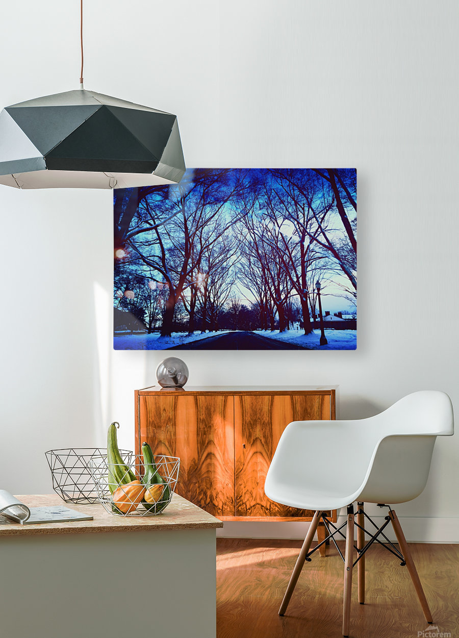 Snowy Delight  HD Metal print with Floating Frame on Back