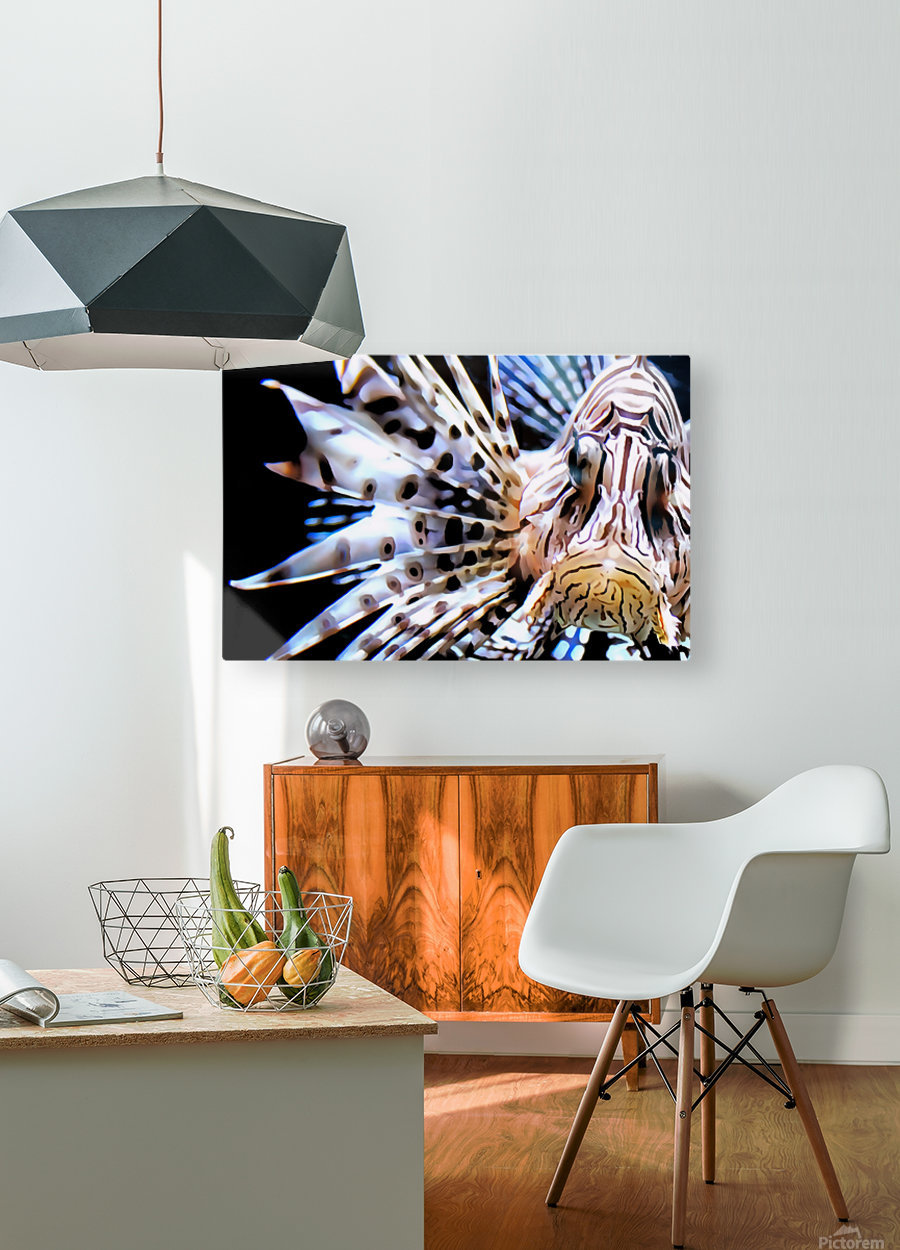 Lion Fish  HD Metal print with Floating Frame on Back