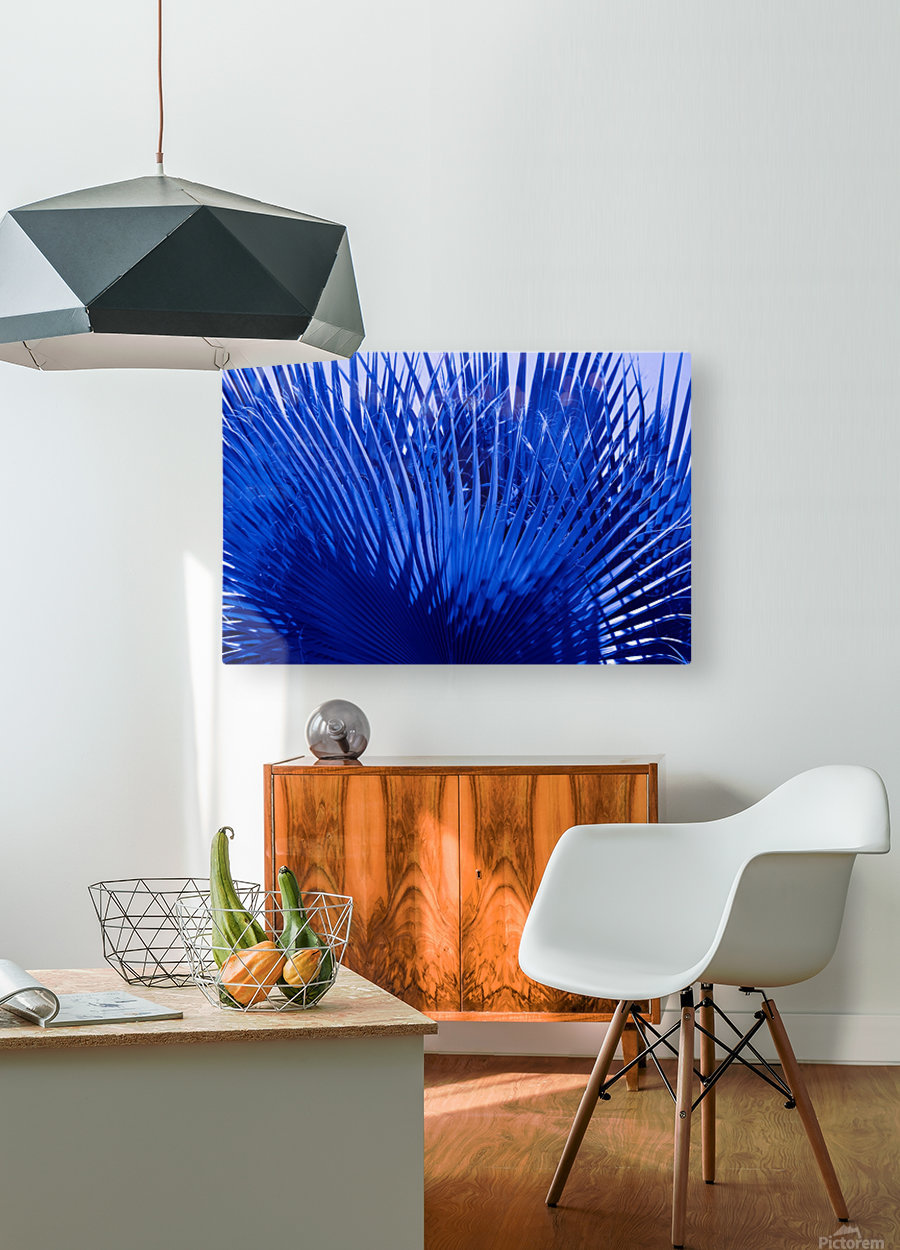 Blue Palms  HD Metal print with Floating Frame on Back