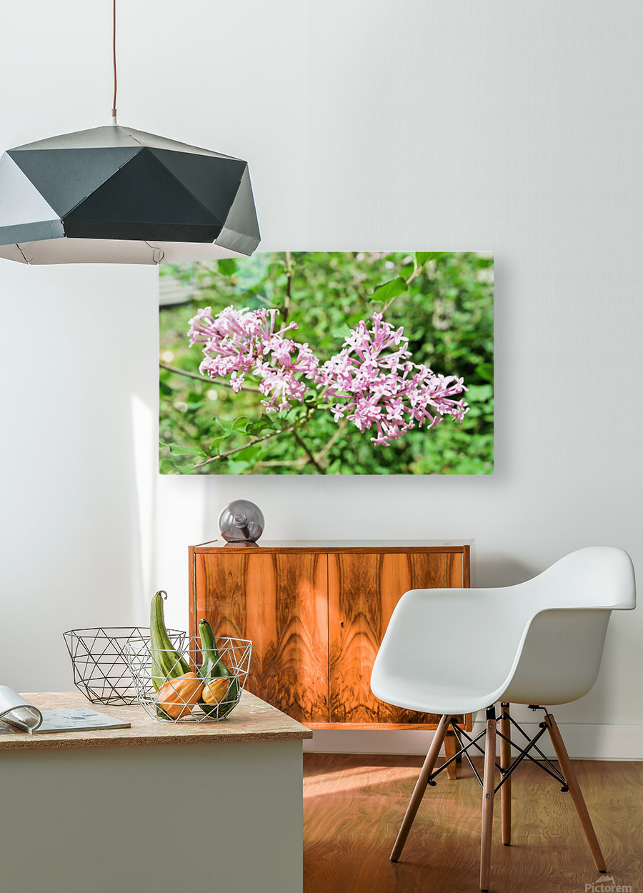 Bright Lilac   HD Metal print with Floating Frame on Back
