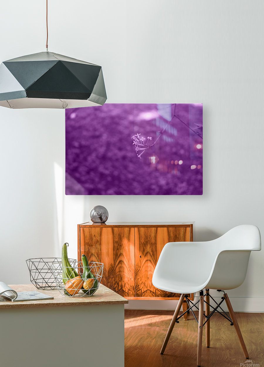 Pretty Bloom Red Violet  HD Metal print with Floating Frame on Back