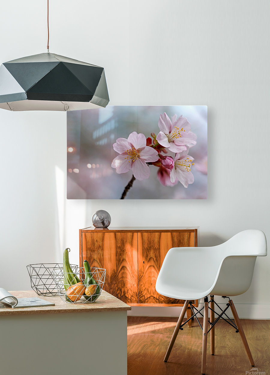 Pastels  HD Metal print with Floating Frame on Back