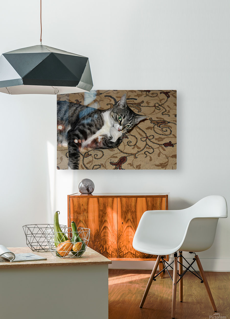 Tiny - eat my foot  HD Metal print with Floating Frame on Back