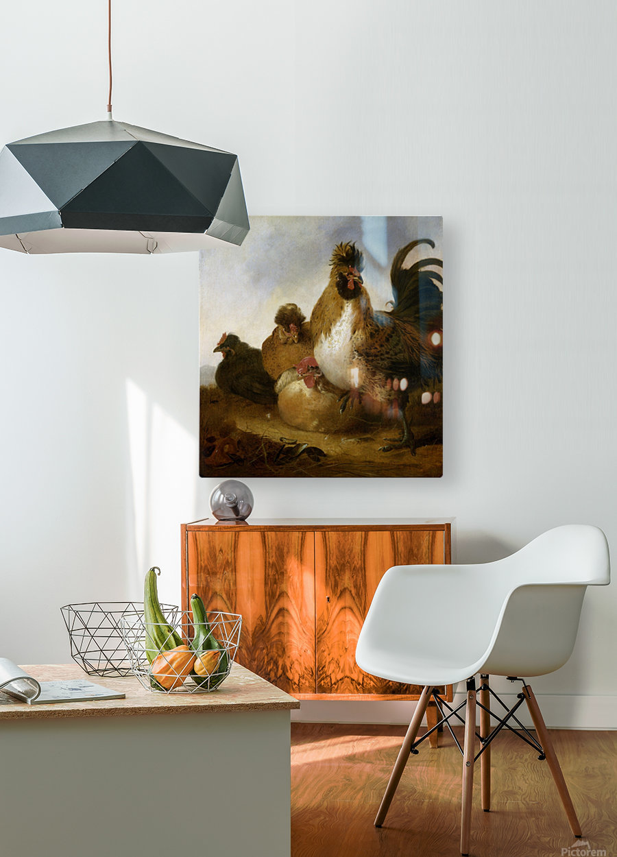 Aelbert Cuyp Rooster  HD Metal print with Floating Frame on Back