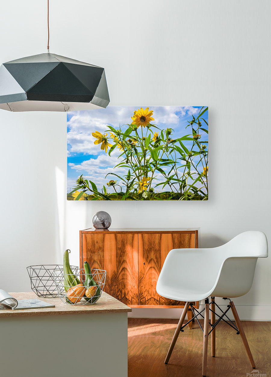 Sunny flower  HD Metal print with Floating Frame on Back