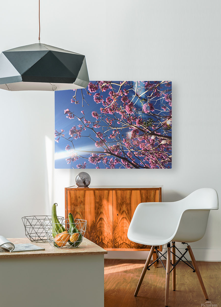 Anime cherry blossom xx  HD Metal print with Floating Frame on Back