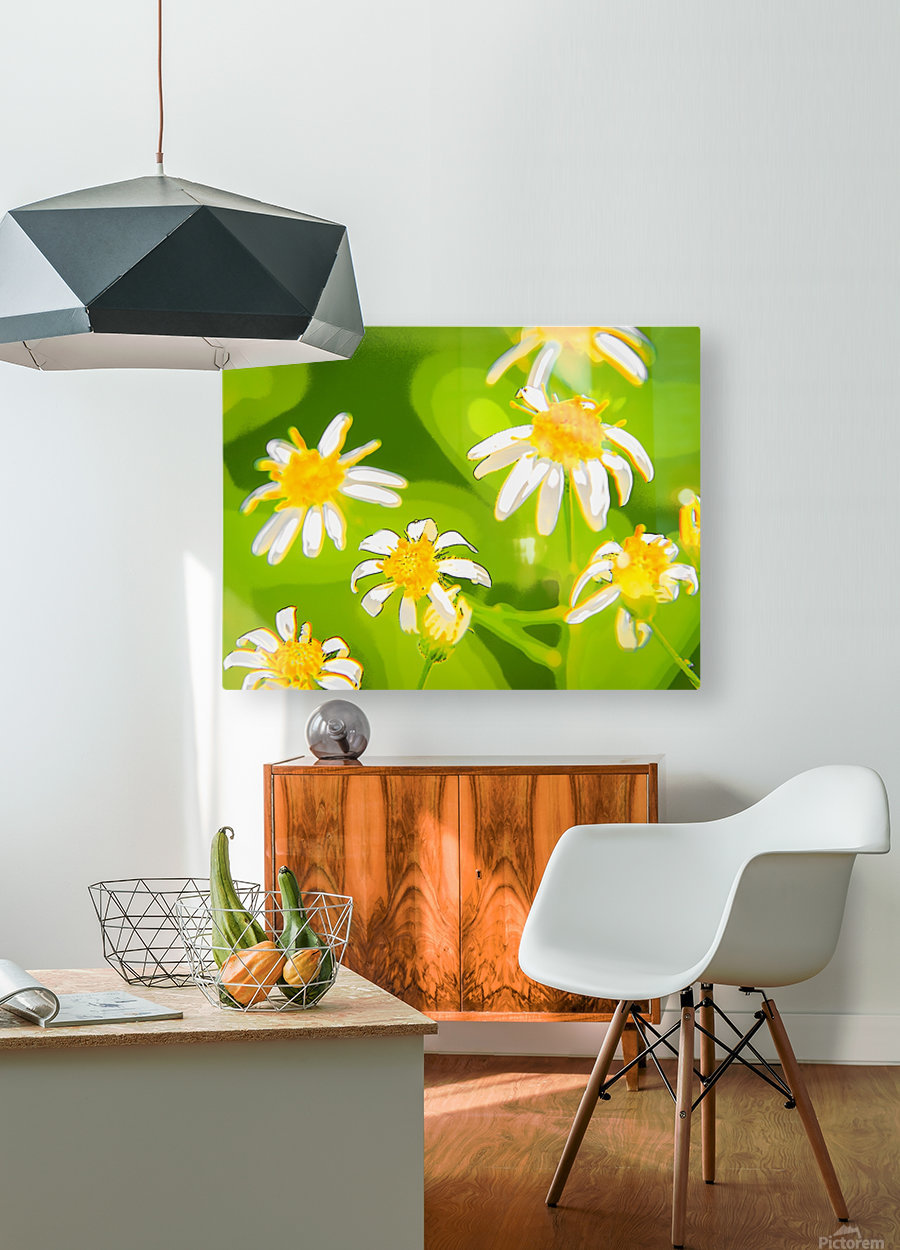 My Daisies - Mes Marguerites  HD Metal print with Floating Frame on Back