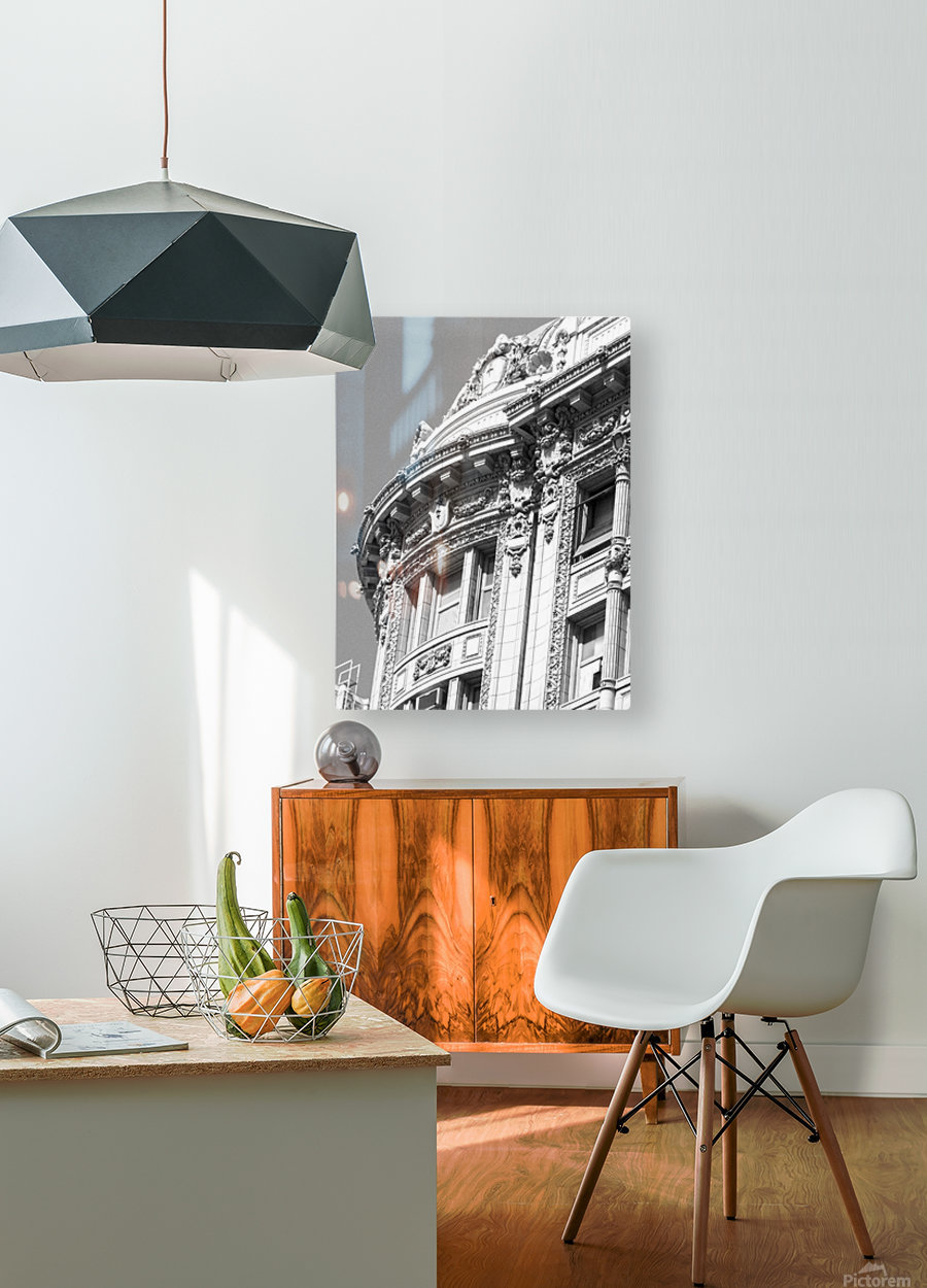 B&W Intricate Details - DTLA  HD Metal print with Floating Frame on Back