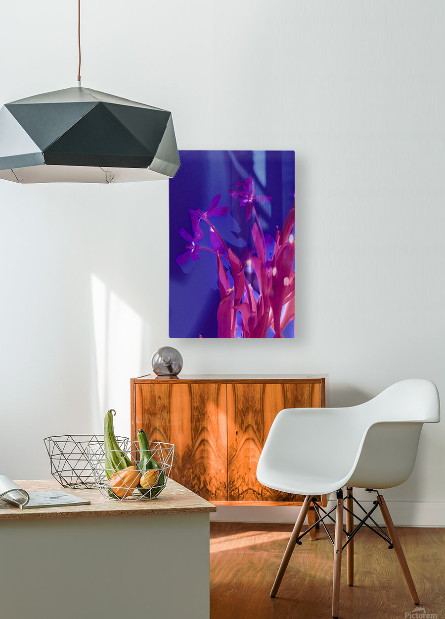 REVERSE TULIPS  HD Metal print with Floating Frame on Back