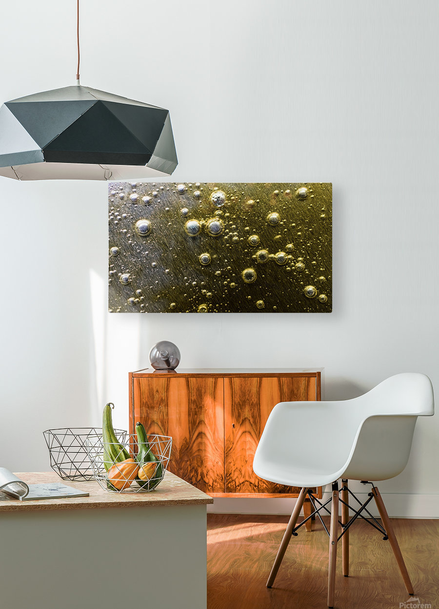 Gold Rush - Ruee vers l Or  HD Metal print with Floating Frame on Back