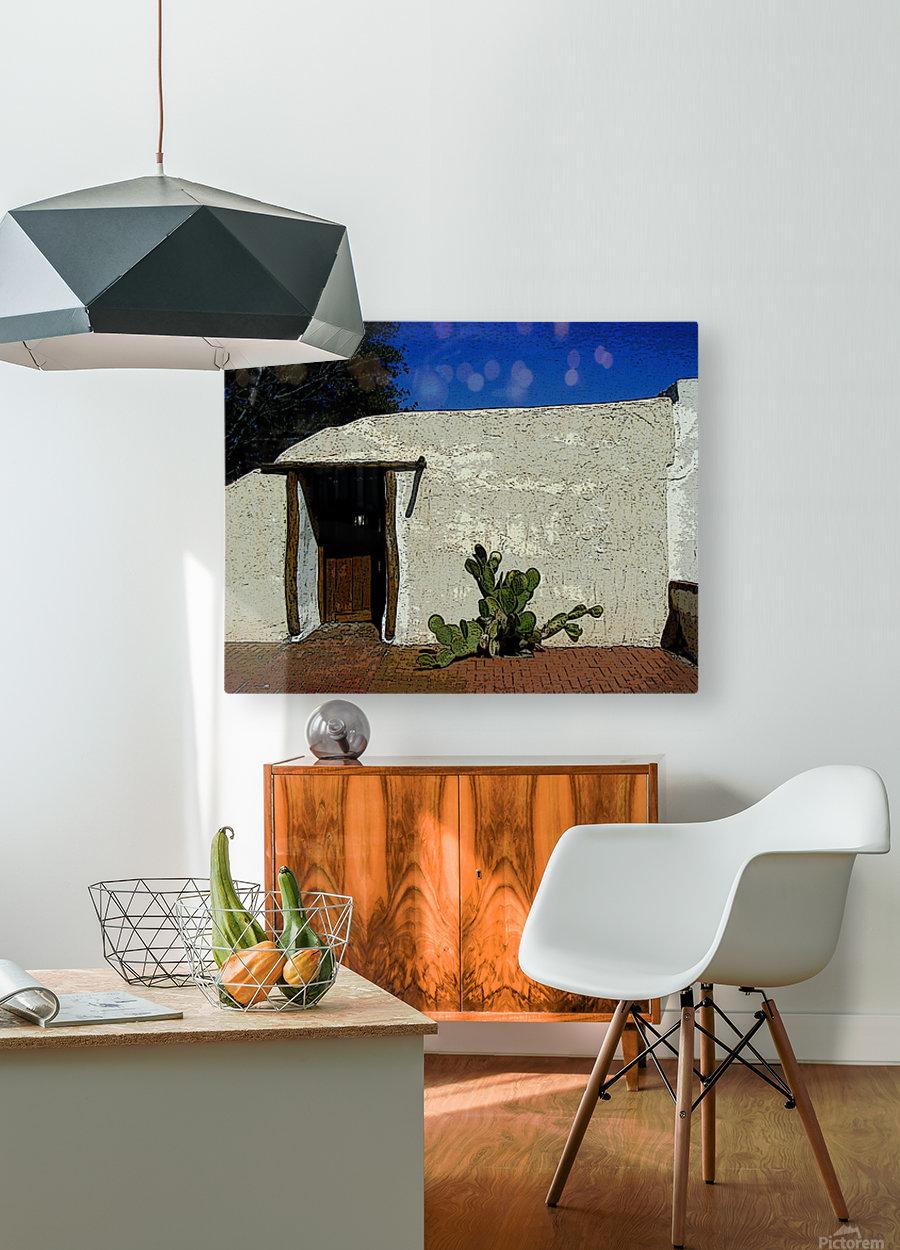 Cactus & Door  HD Metal print with Floating Frame on Back