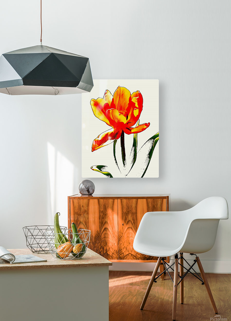 Poppy 3  HD Metal print with Floating Frame on Back