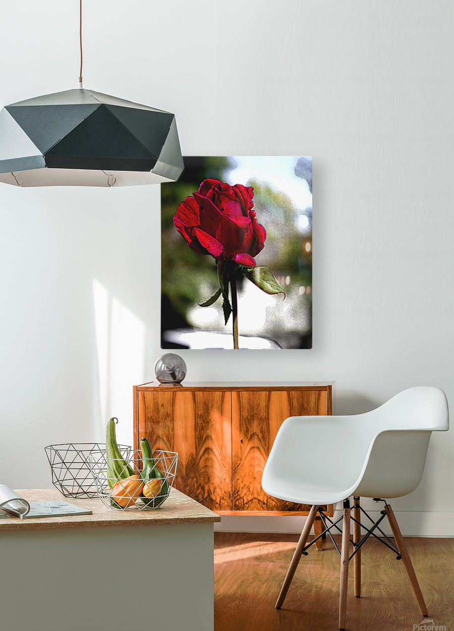 Posterized Rose   HD Metal print with Floating Frame on Back
