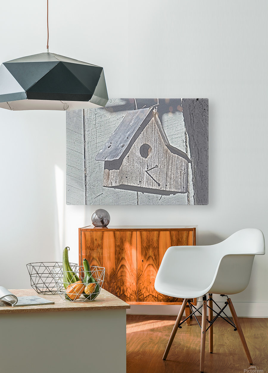 Birdhouse  HD Metal print with Floating Frame on Back