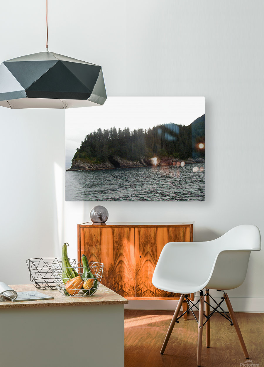 Point with pines  HD Metal print with Floating Frame on Back