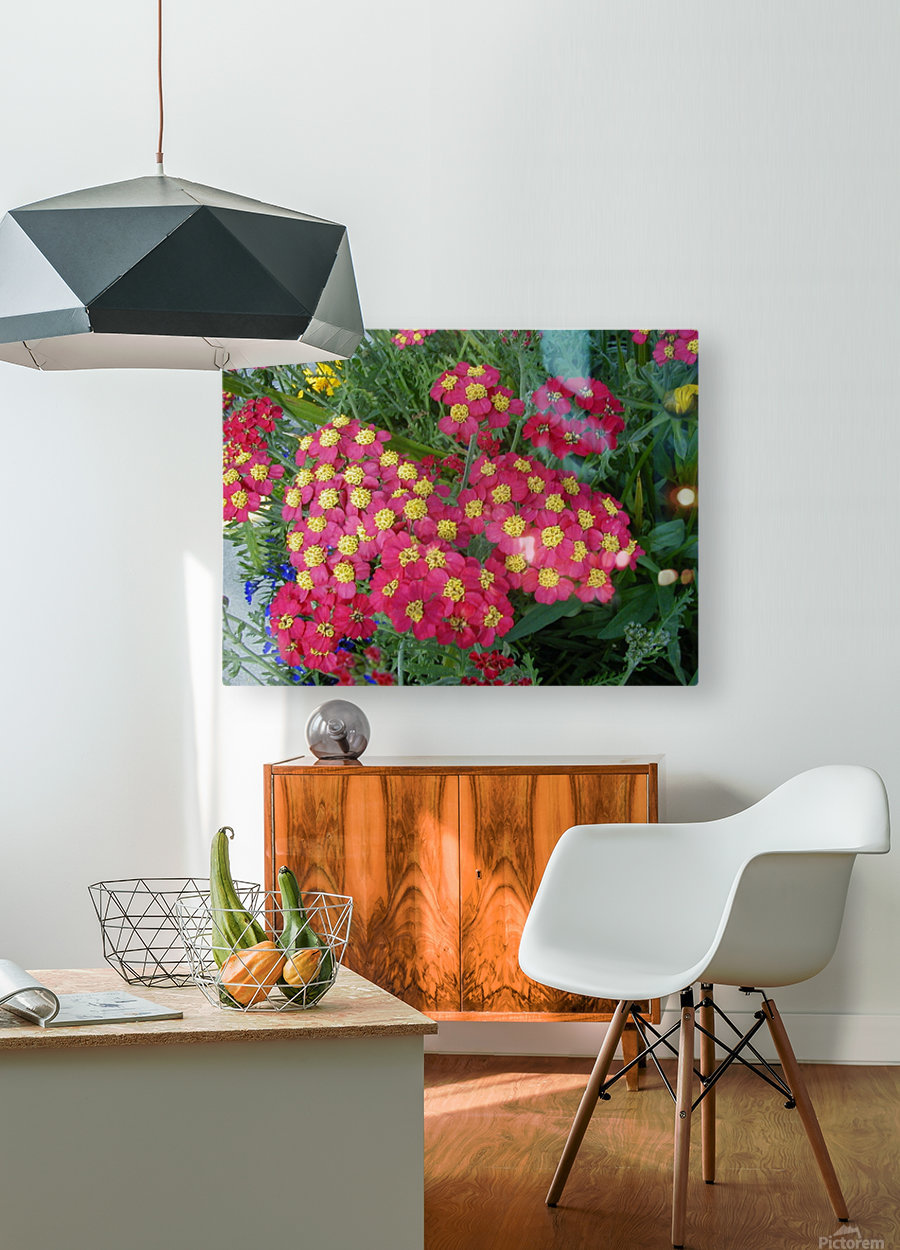 Red Flowers  HD Metal print with Floating Frame on Back