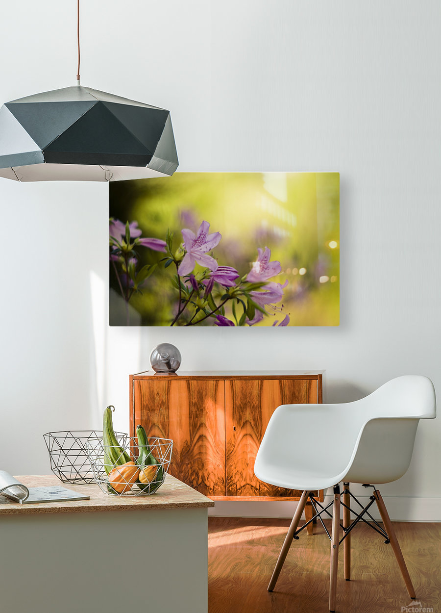 0239  HD Metal print with Floating Frame on Back