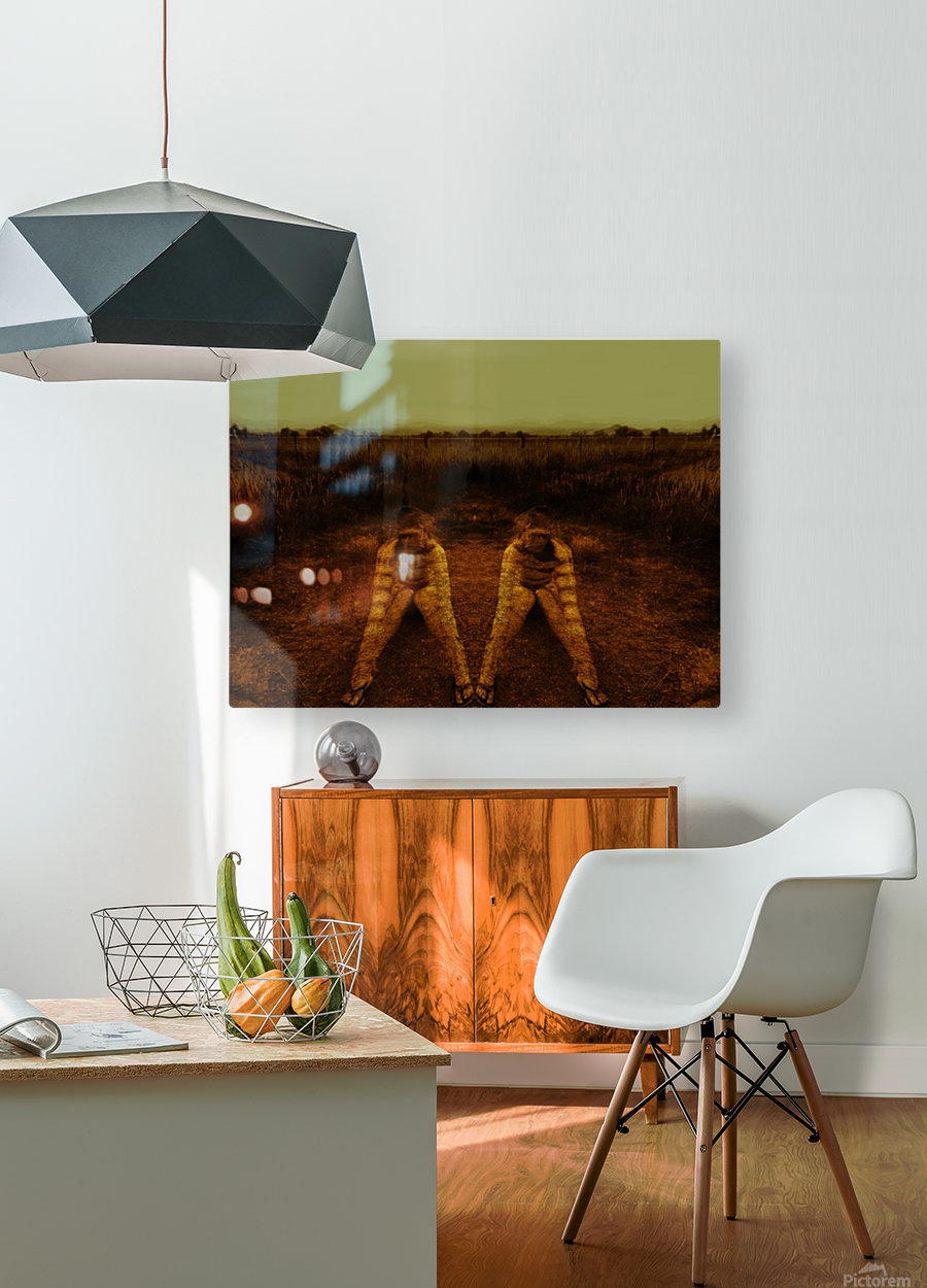 A (2)  HD Metal print with Floating Frame on Back