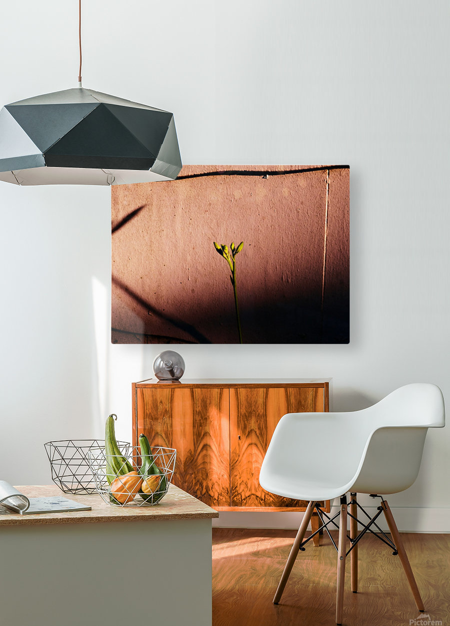 A (9)  HD Metal print with Floating Frame on Back
