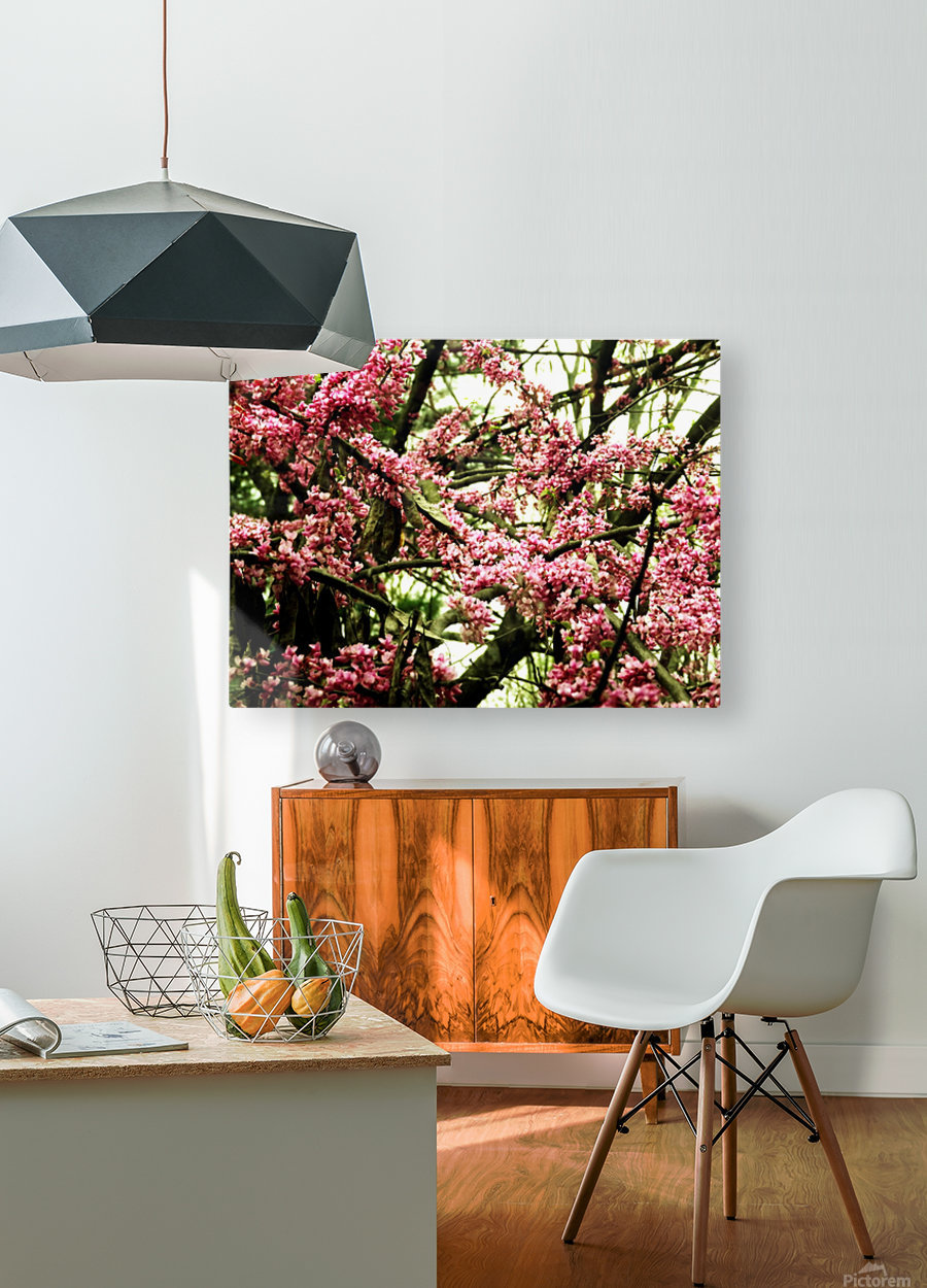 A (8)  HD Metal print with Floating Frame on Back