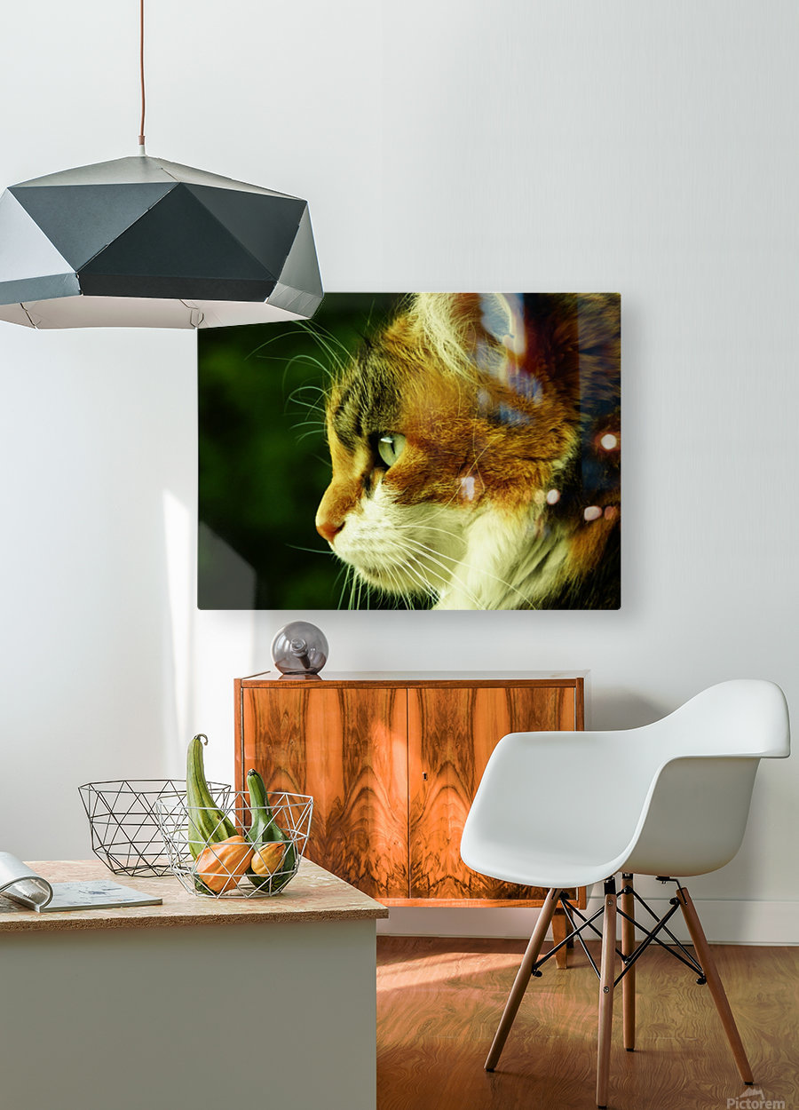 A (6)  HD Metal print with Floating Frame on Back