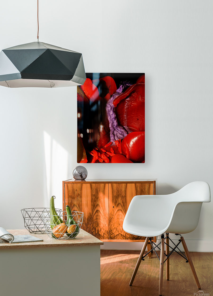 B (8)  HD Metal print with Floating Frame on Back