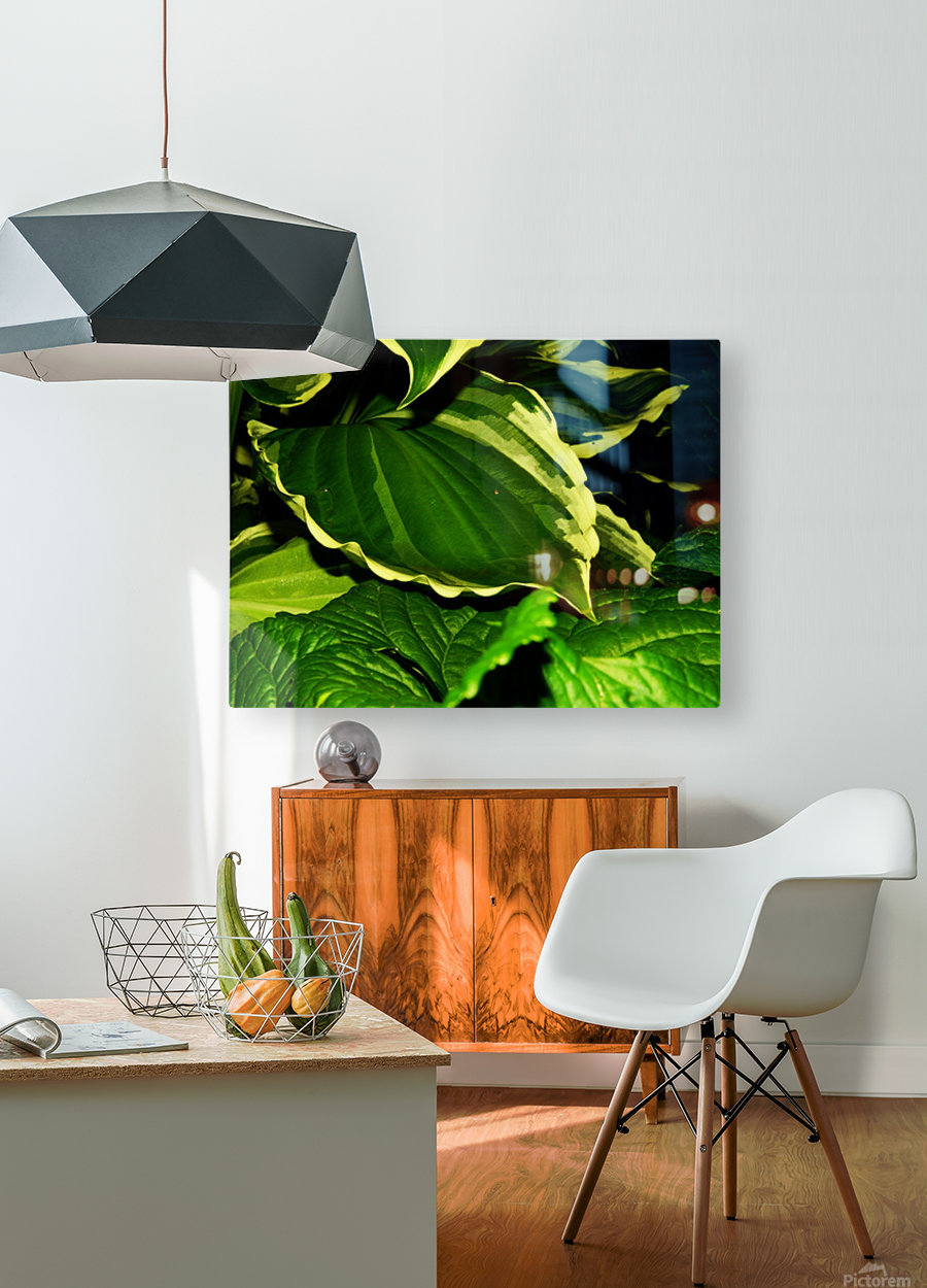 C (9)  HD Metal print with Floating Frame on Back