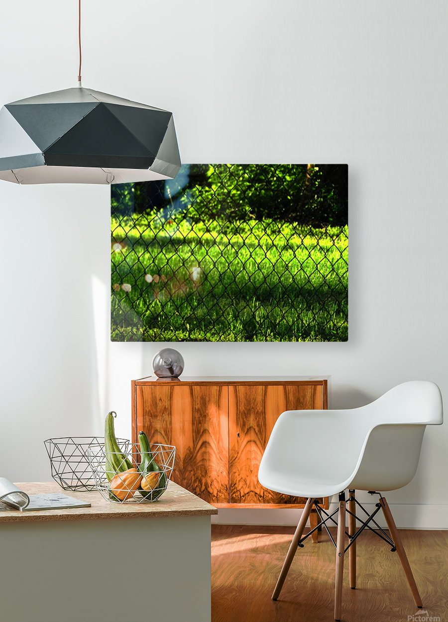 C (2)  HD Metal print with Floating Frame on Back
