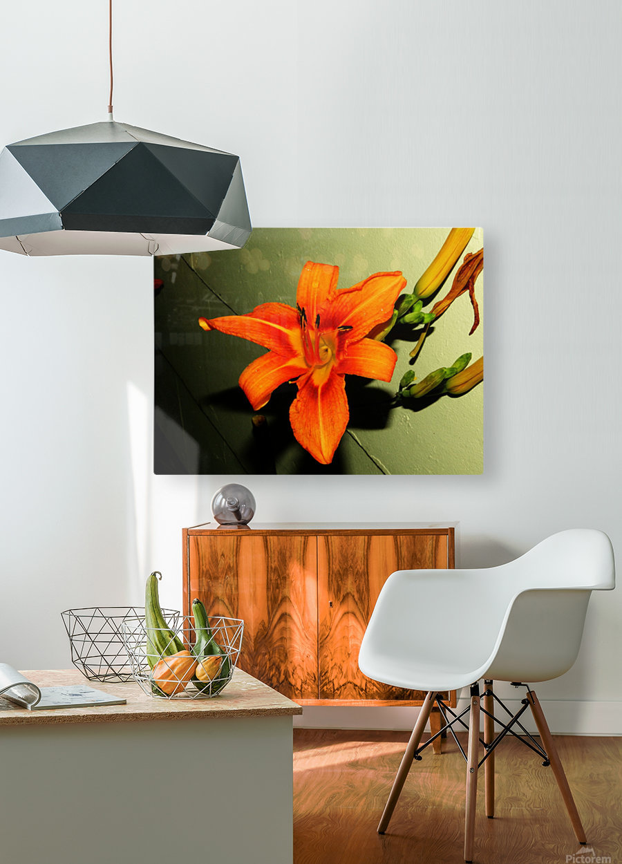 sofn-D014FA2F  HD Metal print with Floating Frame on Back