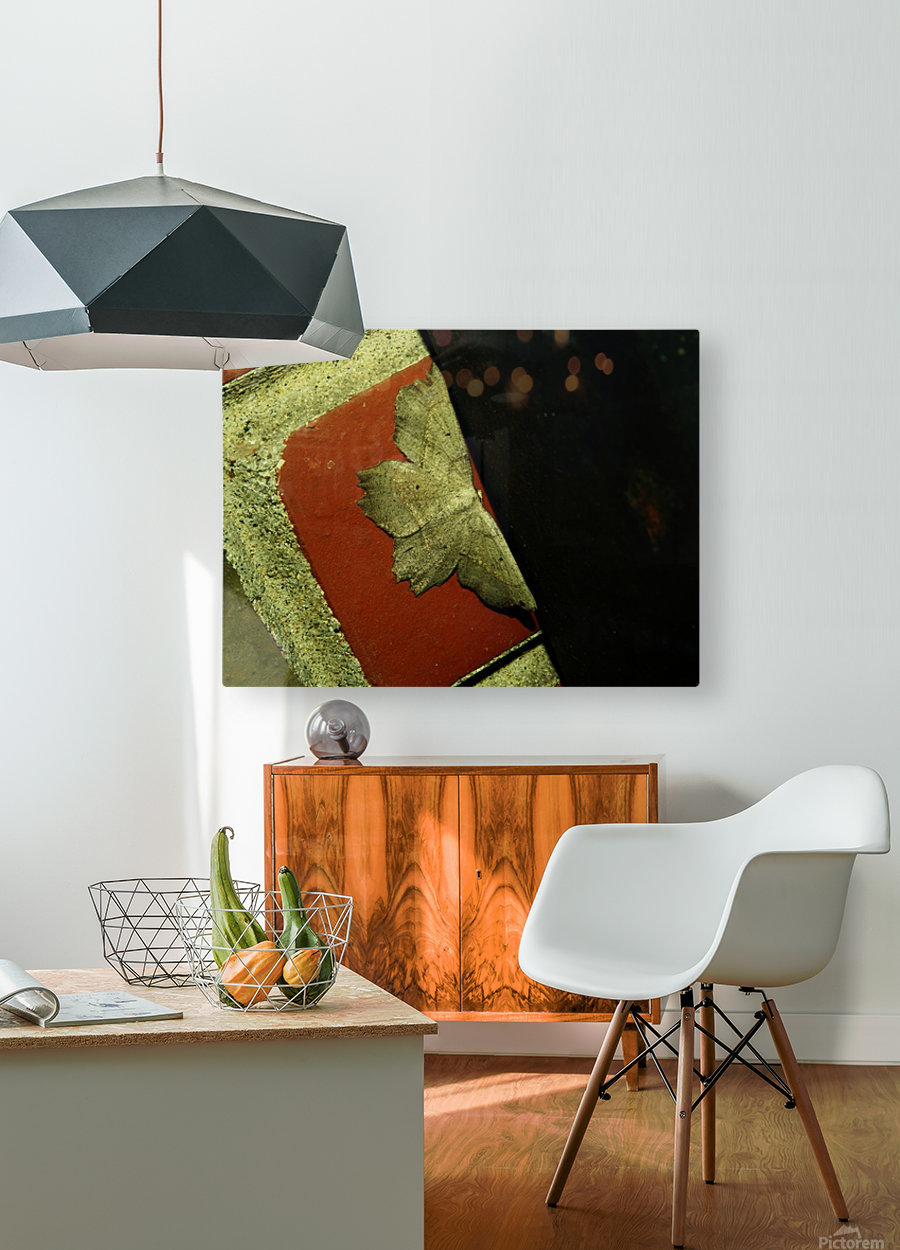 C (3)  HD Metal print with Floating Frame on Back