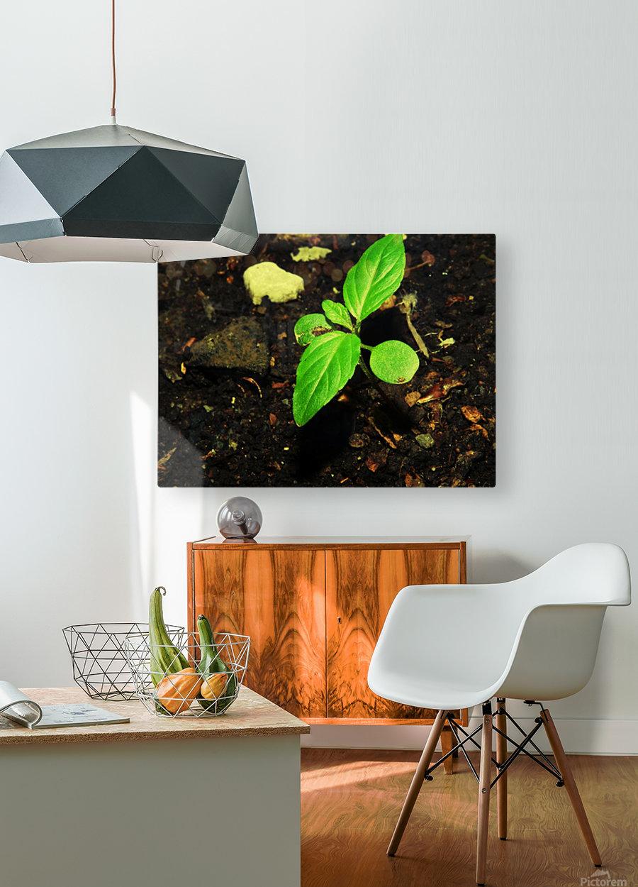 sofn-16FB61B2  HD Metal print with Floating Frame on Back