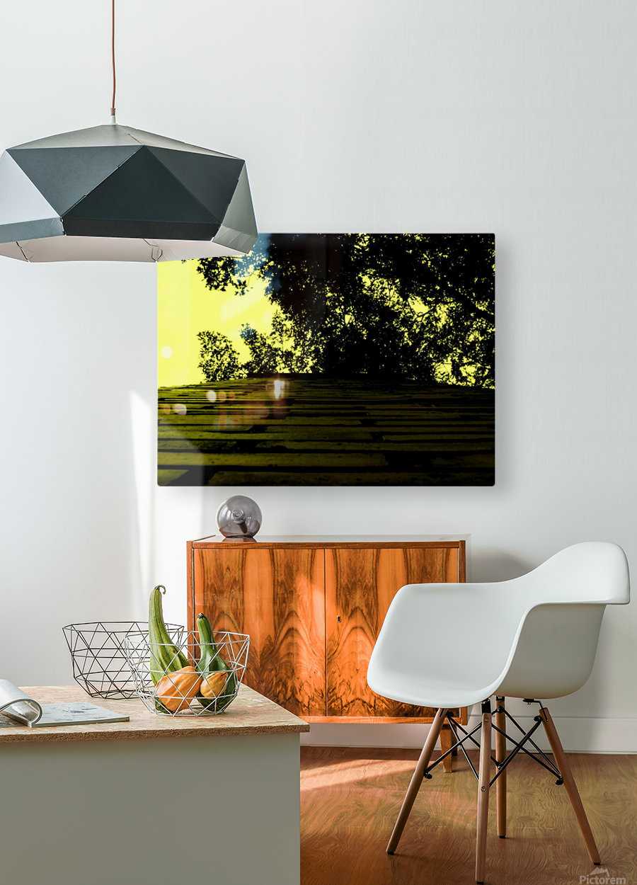 C (15)  HD Metal print with Floating Frame on Back