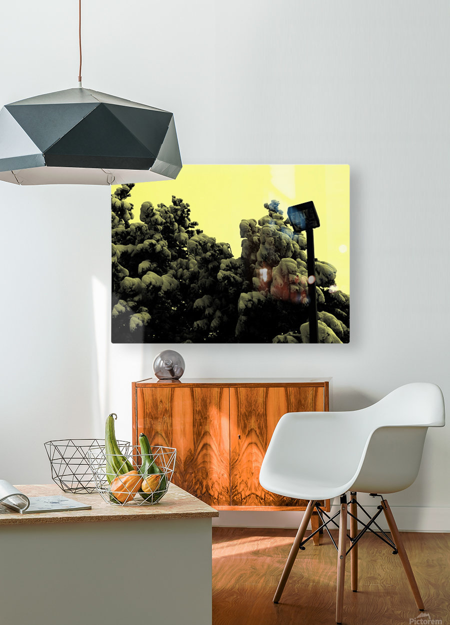 D (10)  HD Metal print with Floating Frame on Back