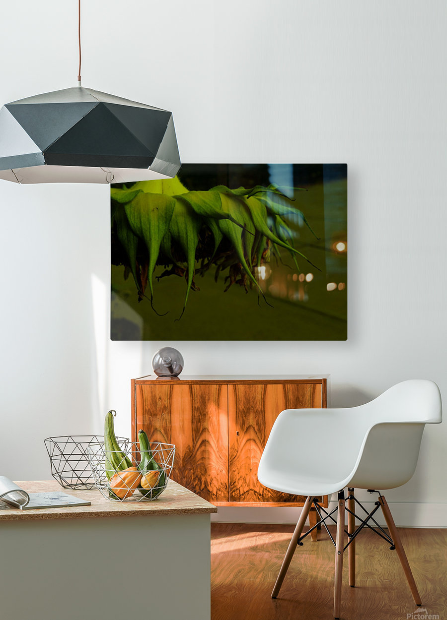D (13)  HD Metal print with Floating Frame on Back
