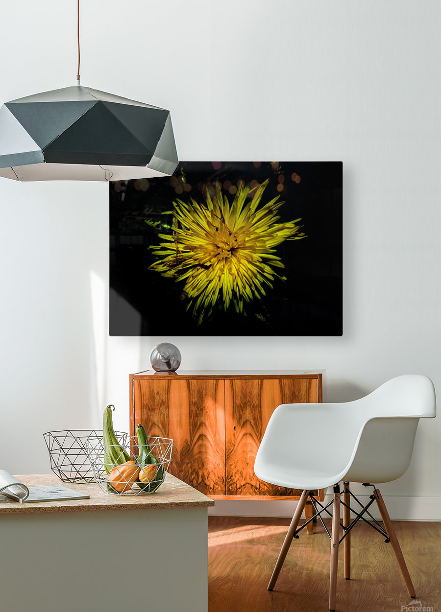 D (6)  HD Metal print with Floating Frame on Back