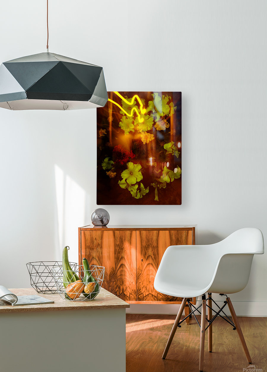 E (12)  HD Metal print with Floating Frame on Back