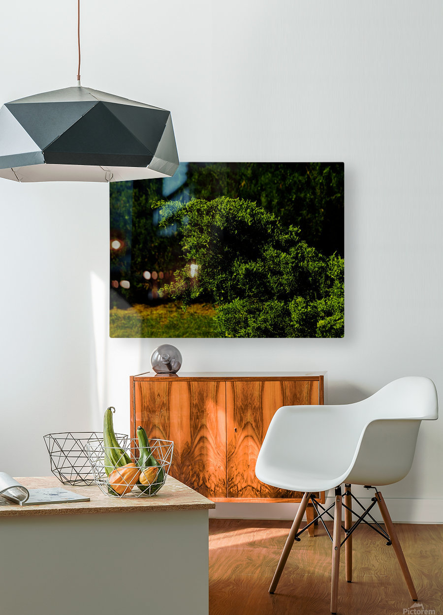 F (15)  HD Metal print with Floating Frame on Back