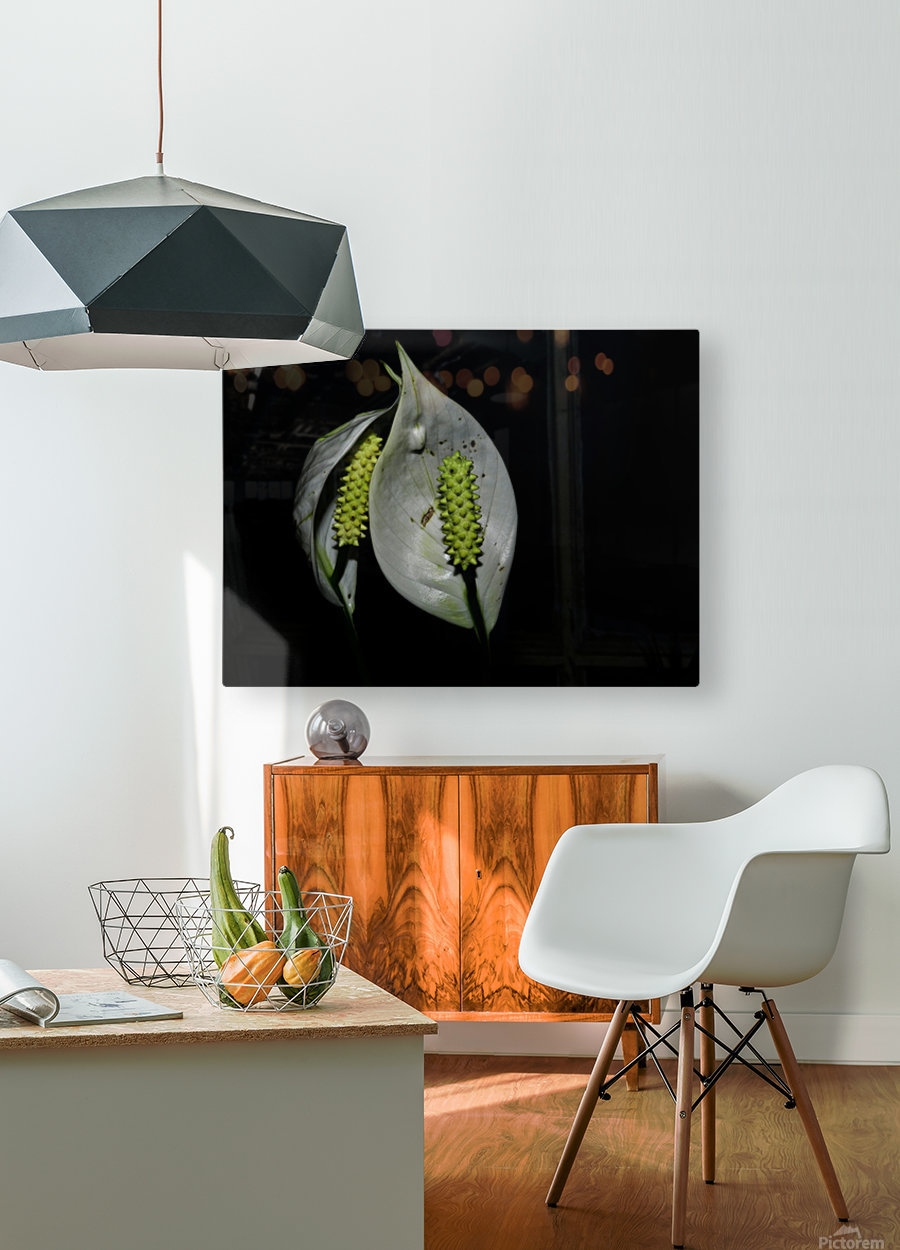 sofn-068EEE2A  HD Metal print with Floating Frame on Back