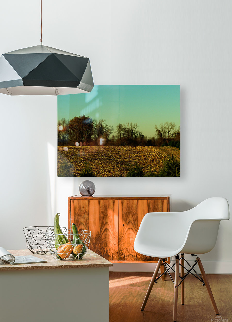 F (7)  HD Metal print with Floating Frame on Back