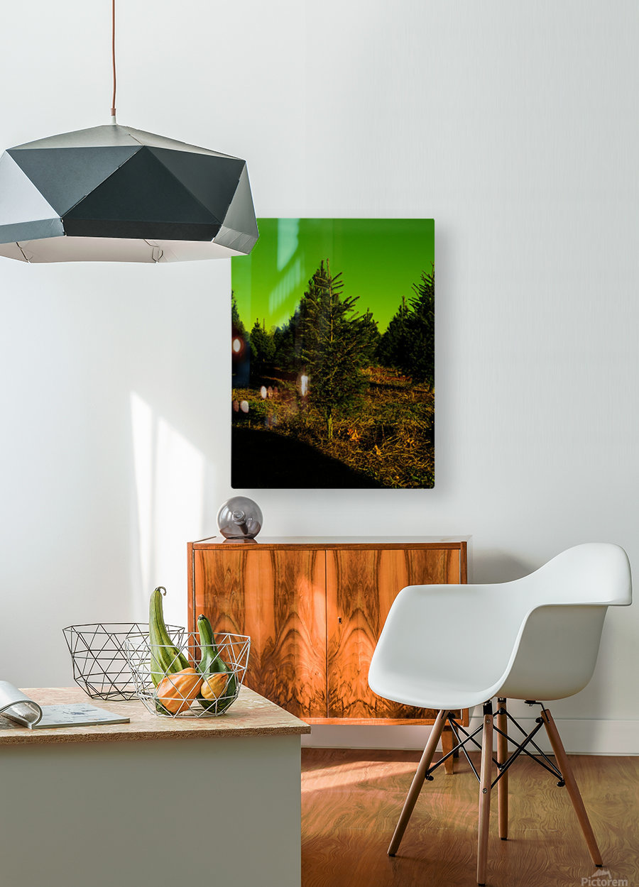 F (6)  HD Metal print with Floating Frame on Back