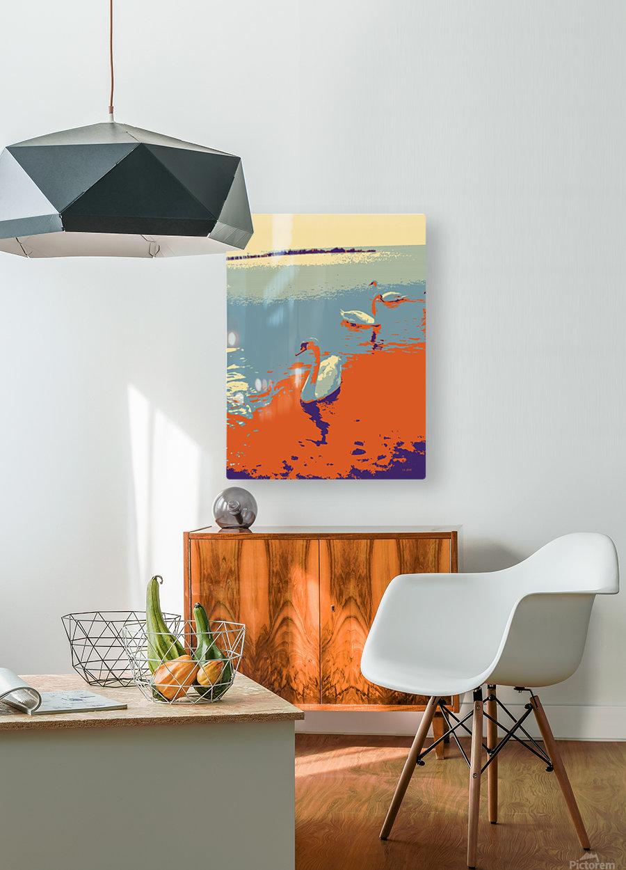Swans  HD Metal print with Floating Frame on Back