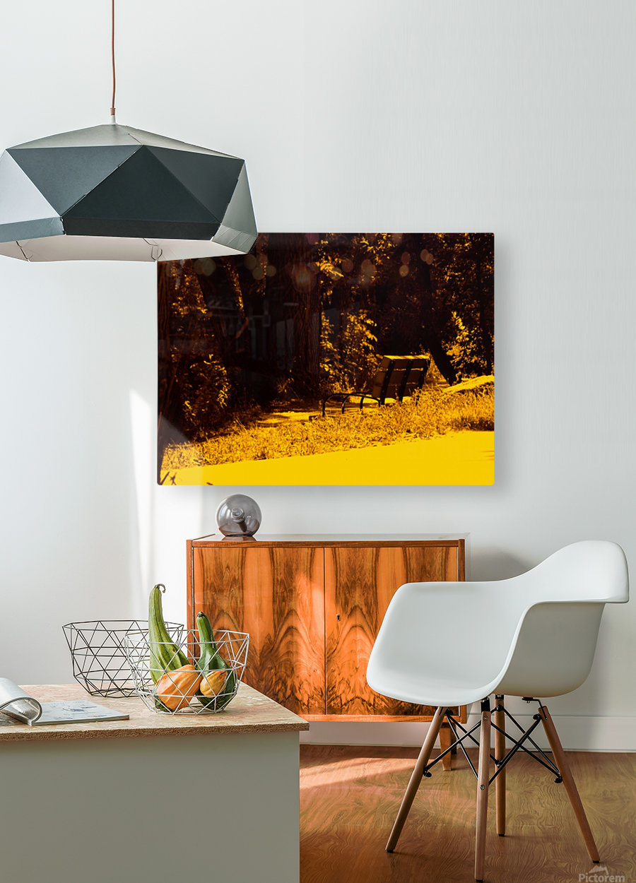 sofn-A43A391F  HD Metal print with Floating Frame on Back