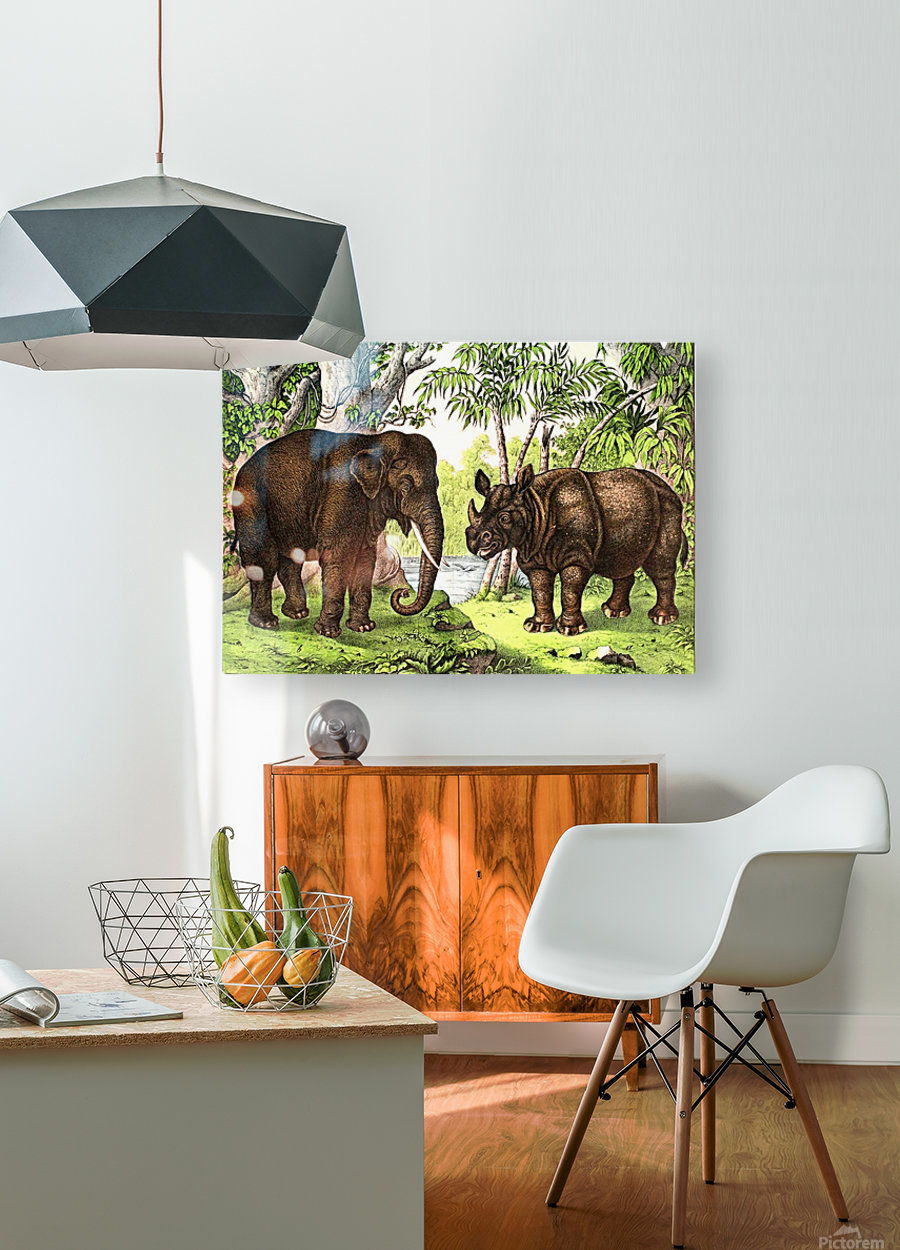Elephant And Rhinoceros  HD Metal print with Floating Frame on Back