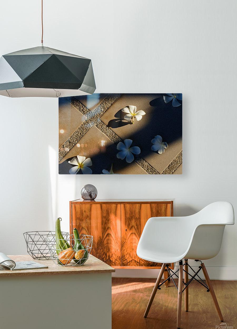 Plumeria flower on floor  HD Metal print with Floating Frame on Back