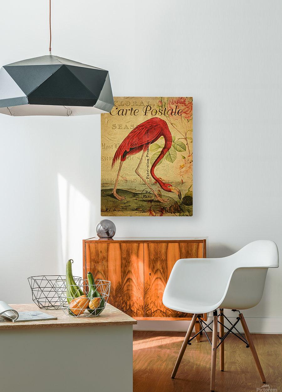 Beautiful Flamingo_OSG  HD Metal print with Floating Frame on Back