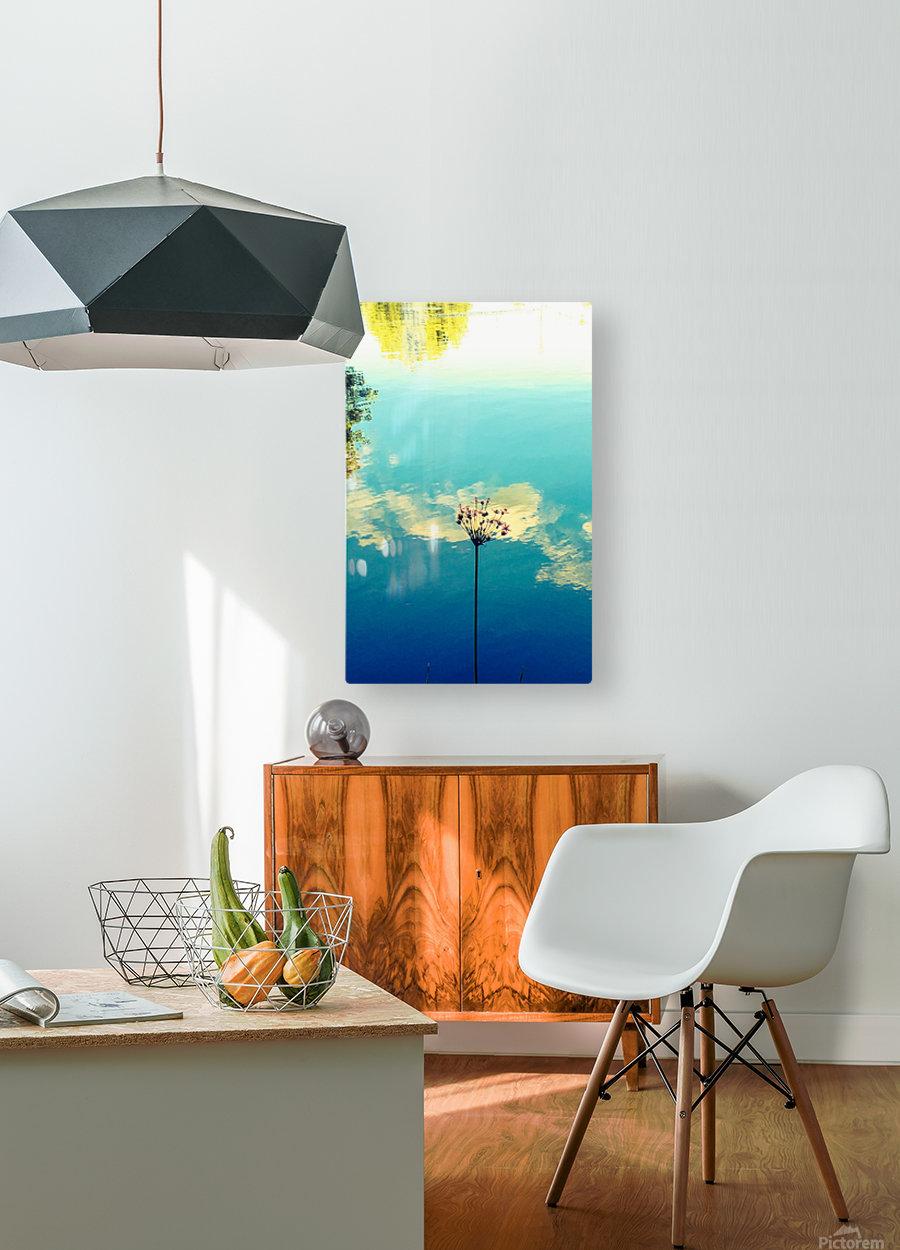 Blue Skies  HD Metal print with Floating Frame on Back