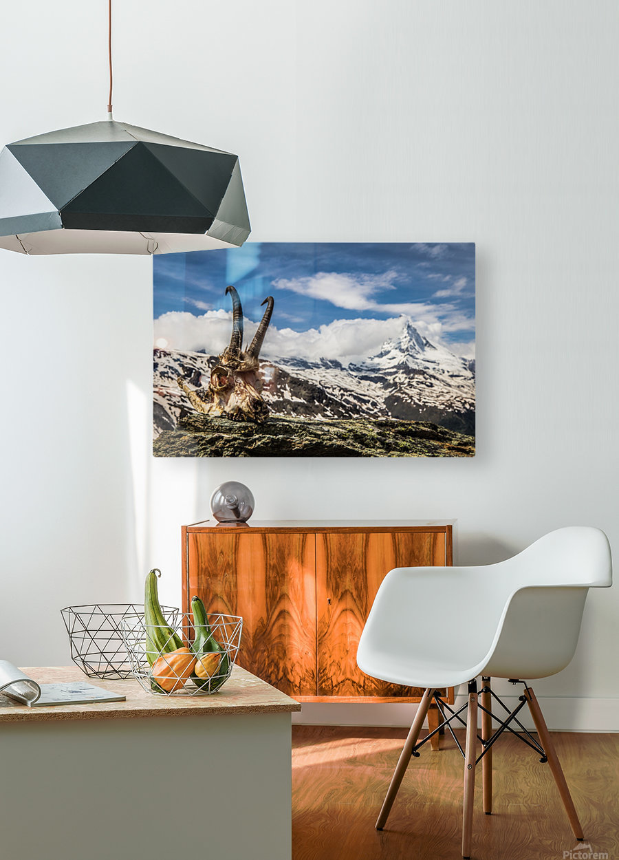 Horns Meet The Horn  HD Metal print with Floating Frame on Back