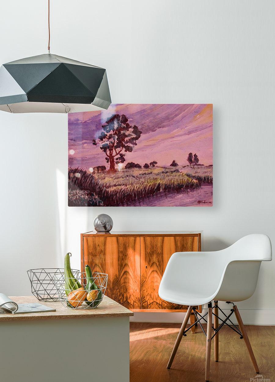 Evening Landscape 2  HD Metal print with Floating Frame on Back